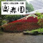 三島,デート,動物,自然,天然記念物,楽寿園